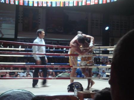 показательный бой